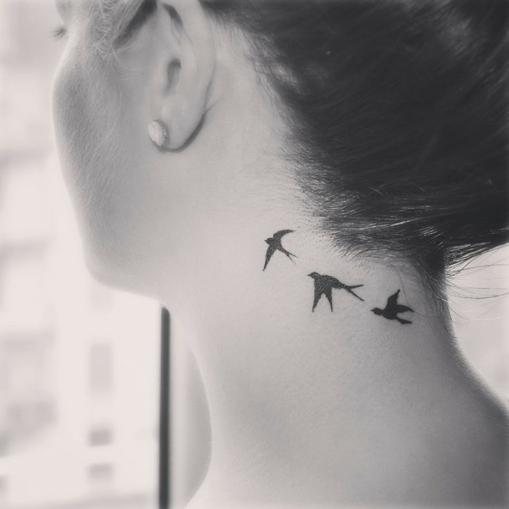 swallow tattoo #tattoo Comments