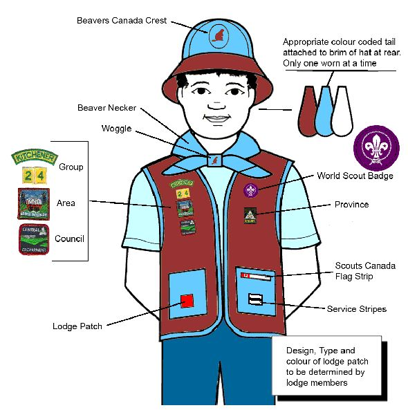 Beaver Uniform - 24th Kitchener Scouting Family