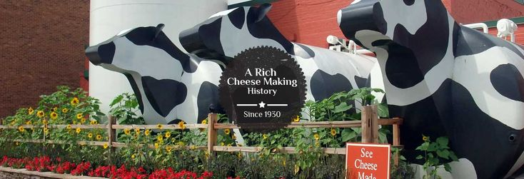 Ashe County Cheese | Buy Cheese Online