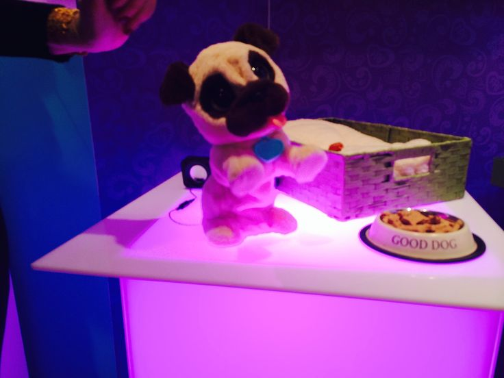 JJ My Jumping Pug: The FurReal Friends line will introduce their first male toy, JJ My Jumping Pug.