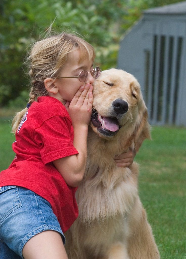 Your-child-will-get-comfort-from-his-hers-dog