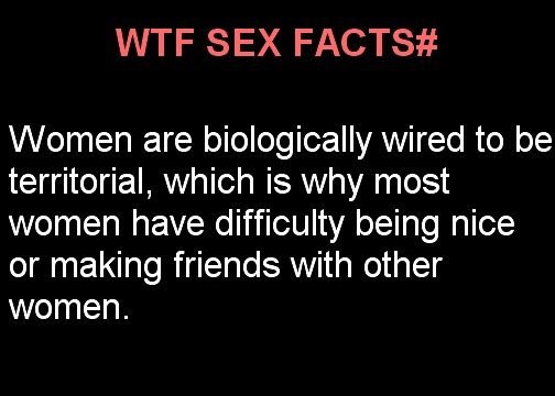 Random funny facts about sex