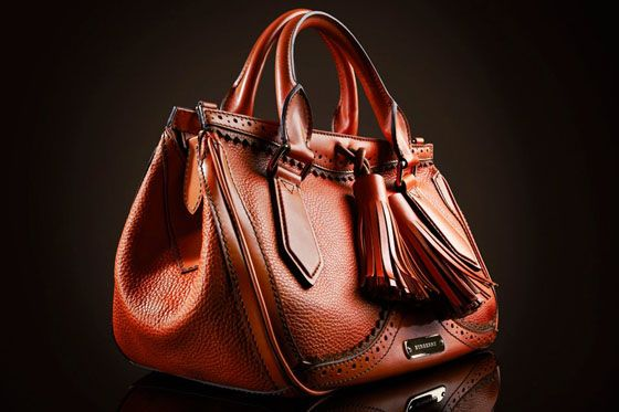 Love this Burberry purse <3