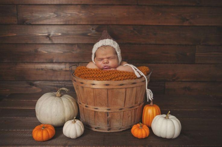fall newborn      www.tammykaniganphotography.com index2.php