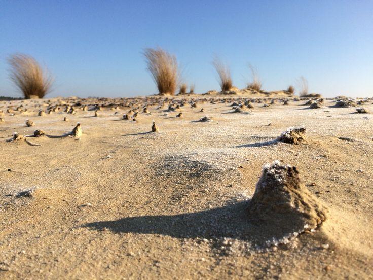 Zo worden de duinen gemaakt