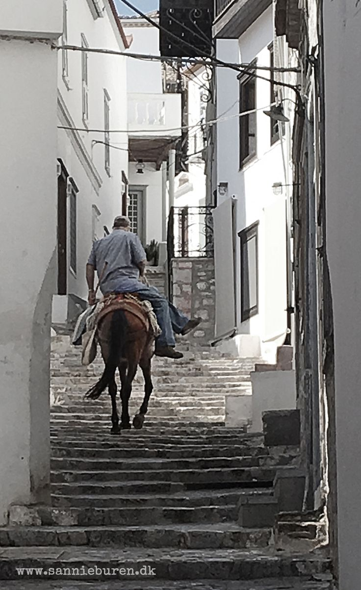Impressions from Hydra, Greece, September 2016 © Sannie Terese Burén #Mules #Hydra