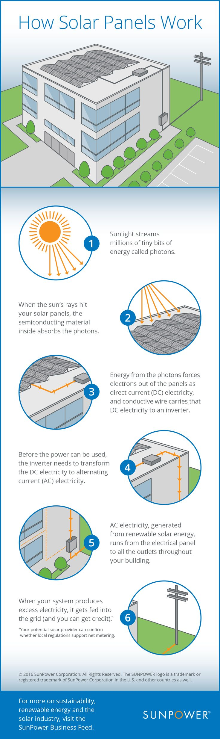 How Do Solar Panels Work? This Infographic Shows You