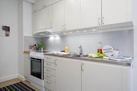 Cocina - Mini piso de 40 m² de estilo escandinavo - Estilo nórdico | Blog de decoración | Muebles diseño | Decoración de interiores - Delikatissen