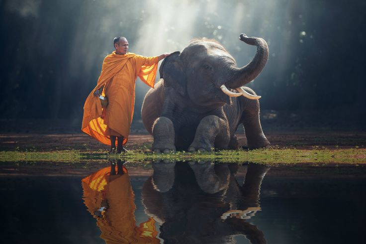 7 Difficult (But Simple) Buddhist Habits That Will Change Your Life