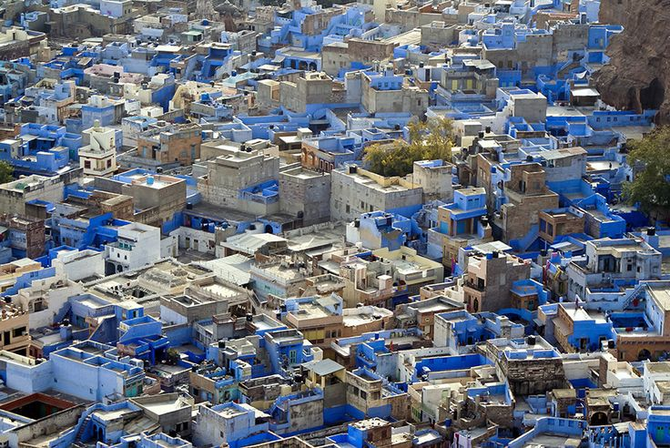 """""""The Blue City"""", Jodhpur, India 