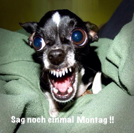 funpot: Montag.png von Karsten