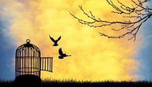 Îmbrățișează libertatea și iubește-ți aproapele | Jurnal pentru Ania