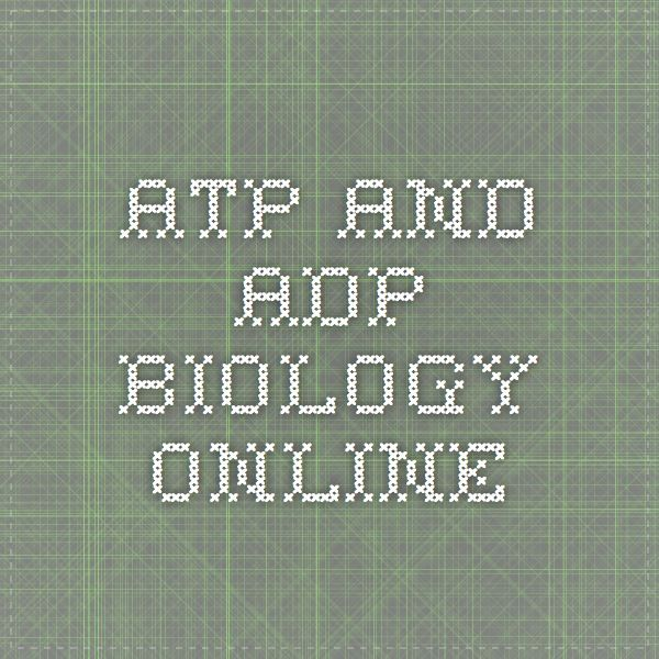 ATP and ADP - Biology Online