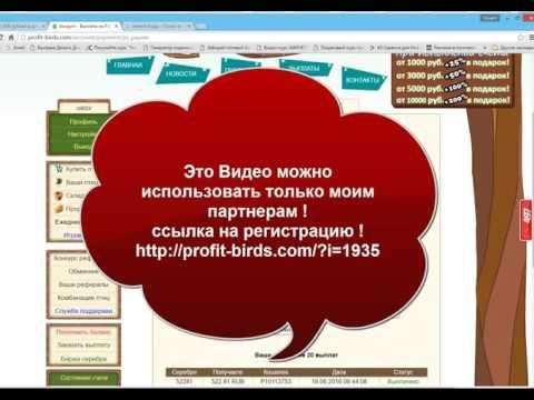 Profitbirts Птицы как заработать миллион рублей!
