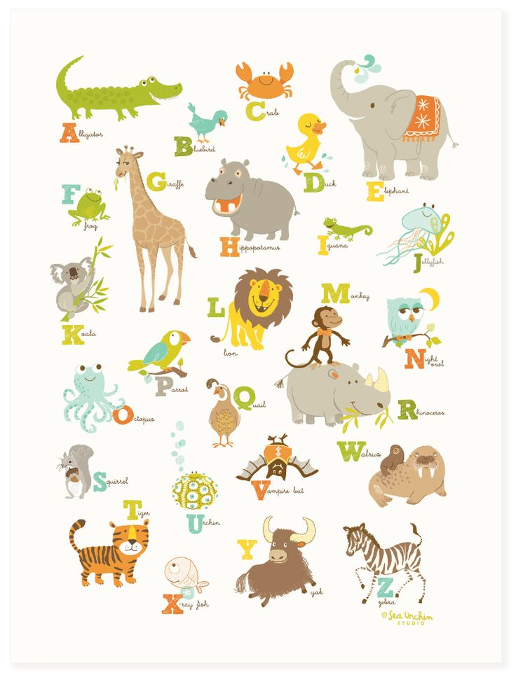 Alligator - Zebra - Colorful, fun and educational, our alphabet posters are a great way for little ones to learn words from visual memory.  Please choose unisex or pink color option Printed in the USA on 110 lb. uncoated cotton paper 12in W x 16in H Carefully packaged in a cello sleeve with backing board