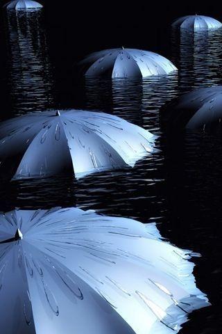 Blue, umbrella, parapluie