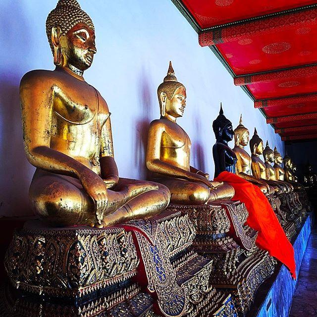 #temple#buddhism #buddha #gold#religion #spiritual #meditation#beautiful #thailand #bangkok #pray#offer #zen #travelgram #travel#travels #traveling #travelphotography #wanderlust #explore#instapic #instatravel #instadaily #instablog#nomads #aroundtheworld #watpho #thai #asia by (estherasmus). instatravel #watpho #instadaily #beautiful #meditation #religion #instapic #thailand #asia #travelgram #temple #wanderlust #thai #buddha #spiritual #bangkok #travels #aroundtheworld #nomads…