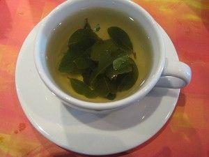 Buy Coca Tea (Mate de Coca): Benefits, How to Make, Side Effects | Herbal Teas Online