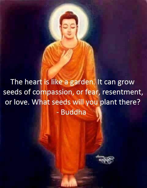 """""""The heart is like a garden. It can grow seeds of compassion, or fear, resentment or love. What seeds will you plant there?"""" ~ Buddha"""