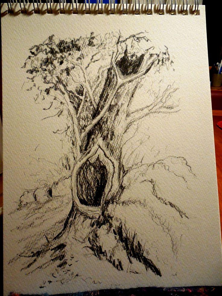 Baum bei Okit, HR, Graphit