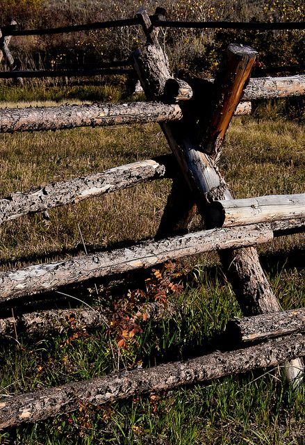 Log Fence Ideas For The Home Log Fence Fence Wooden