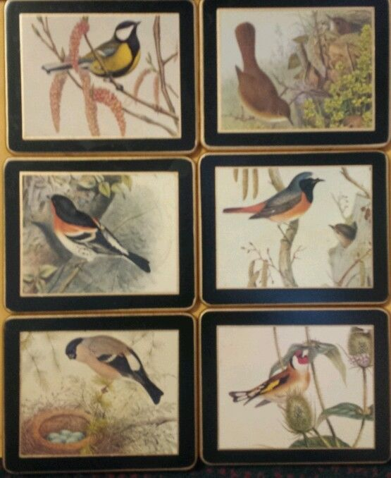 ABOUT 20.00 TOTAL  4-1/2X3-1/2  FOR WALL??               Lady Clare Traditional Placemats Vintage Coaster Set in box SONGBIRDS