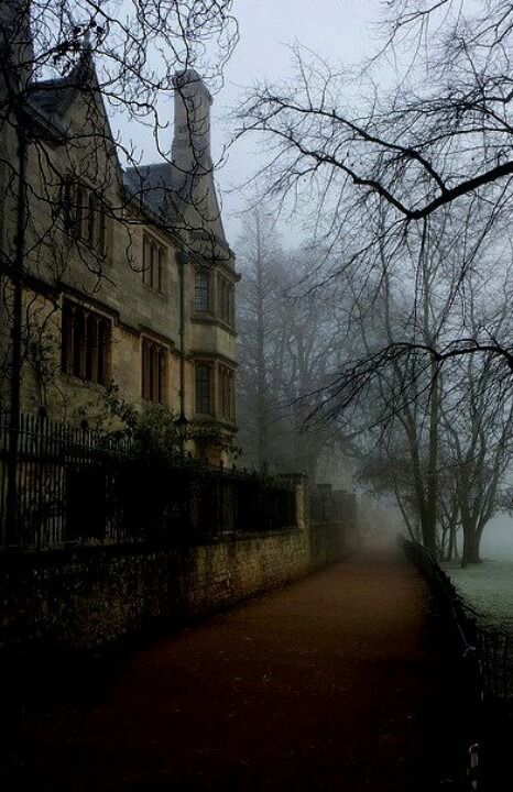 coffee-and-wood:  Oxford
