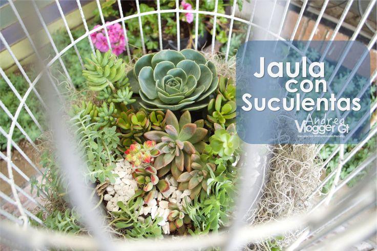Jaula con Suculentas  || Succulents birdcage