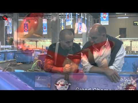Nozumi besproken; interview met Grand Champion owner Michel   Hoelang kennen zij hun Nozumi al? Wat betekend het eigenlijk en wat vind Michel van de body en hebben ze nog meer in petto? Kom het te weten in het 'over the vat' interview!   http://www.koiquestion.be/2014/06/11/nozumi-besproken-interview-met-grand-champion-owner-michel/