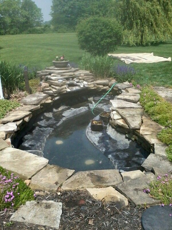 Easy cleaning of large kio pond my service ponds for Easy backyard pond