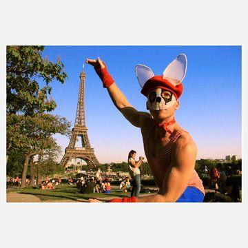 Paris Rabbit!