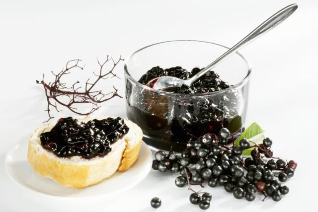 elderberry jelly you can make on your small farm or homestead.