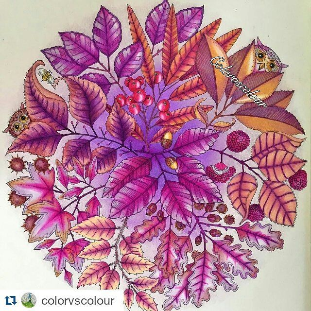 By Colorvscolour Secretgarden Coloringbook Coloring Colouring