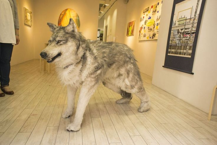 how to make a realistic wolf costume