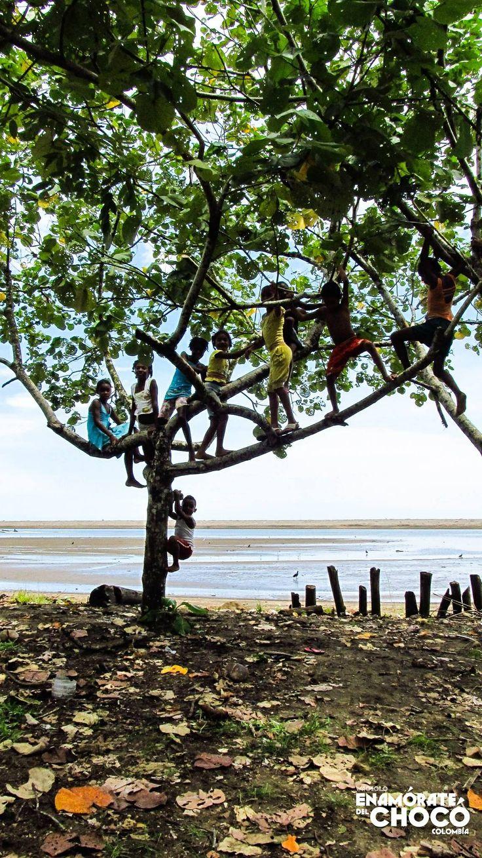 Dia de la tierra nos sumamos como desde pequeños para el cuidado especial de nuestros ecosistemas en el Chocó