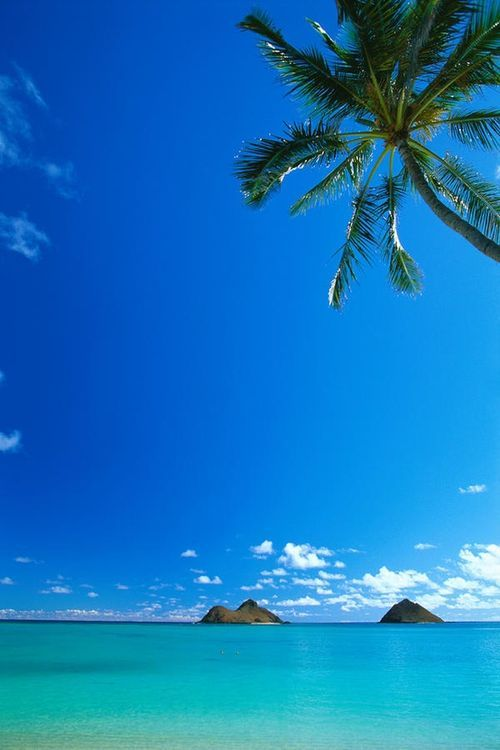 Oahu, Lanikai Beach - swim, snorkel, see sea turtles, and paddle board out to the islands ;-)