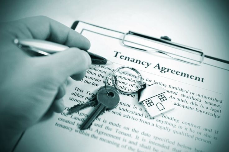 Tenancy Agreement Image URL http\/\/icpicslivejournal - property management agreements