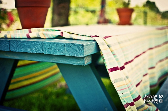 Bright blanket (colorful picnic tables wouldn't hurt either...idk what parks around here have those)