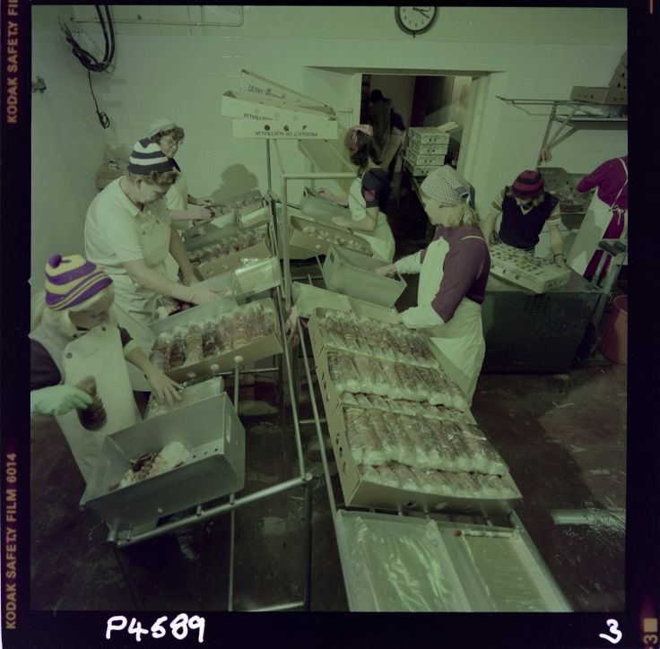 327889PD: Processing western rock lobster at the Geraldton Fishermen's Co-operative, 20 April 1976 https://encore.slwa.wa.gov.au/iii/encore/record/C__Rb3116958