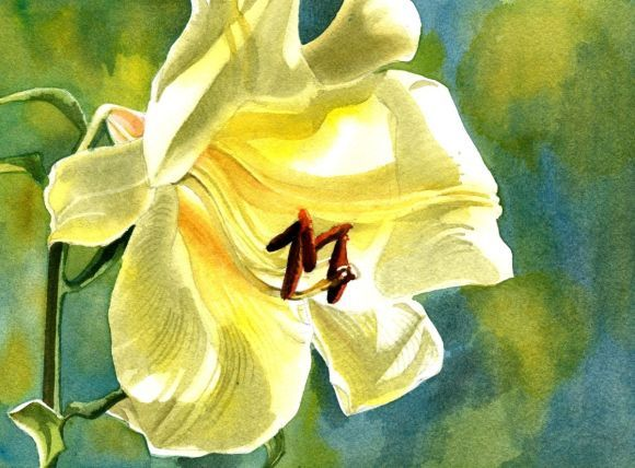 """A painting a day #14 """"lily with blues"""""""