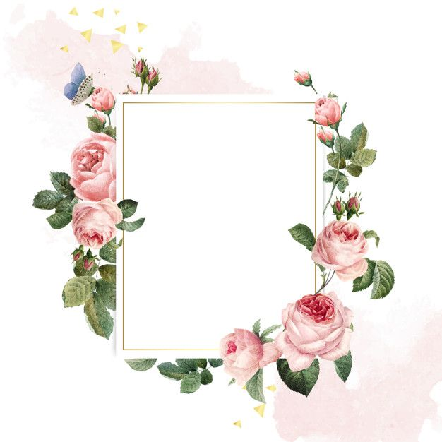 Download Blank Rectangle Pink Roses Frame On Pink And White Background For Free Fundo Do Casamento Vetores Free Aquarela Floral