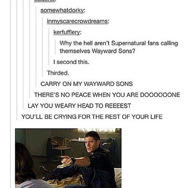 It must become our name. No more SPN fandom! We are now the Wayward Sons (or daughters...I guess) xD I like that