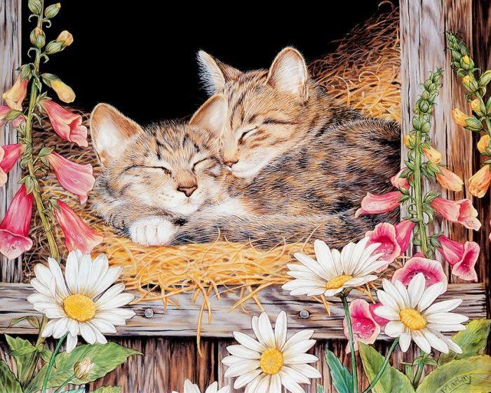 иллюстрации художницы Jane Maday - 01
