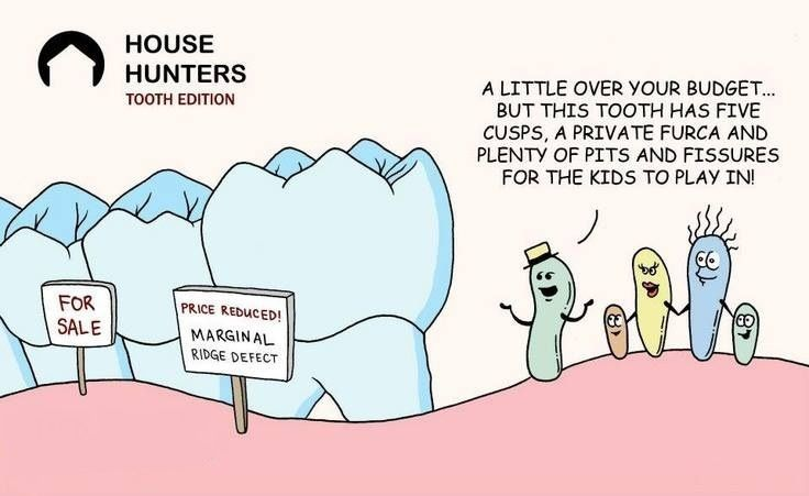 Funny Dental Quotes On Pinterest. QuotesGram by @quotesgram