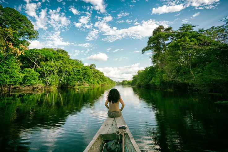アマゾン川 — コロンビアとぺルーの国境   【写真】山脈、大河、湖……世界の17の自然的国境