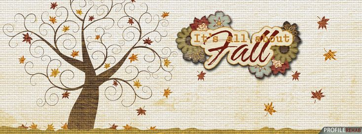 Its All About Fall Facebook Cover - Pictures of Fall Leaves and Trees