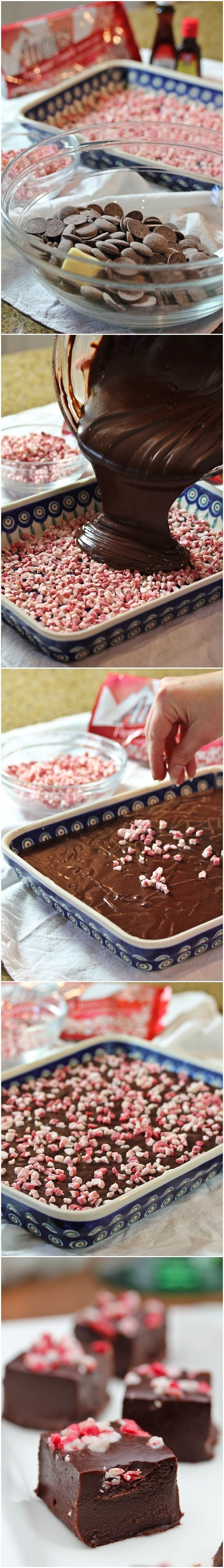 Peppermint Fudge.  Use Velata dark chocolate and peppermint mix-ins for high-quality ingredients.  www.carrietouchette.velata.us