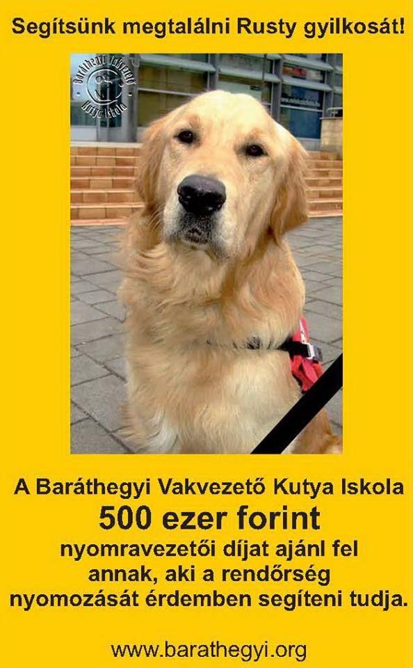Kedves Barátaink, mély fájdalommal tájékoztatunk, hogy nagy veszteség ért bennünket júliusban, amiről csak most beszélhetünk nyilvánosan: Megmérgezték Rustyt a hűséges vakvezető kutyát. Segítségeteket kérjük gyilkosa megtalálásában, hogy szörnyű tettét ne tudja megismételni!