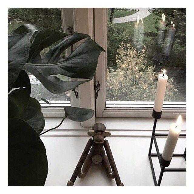 On instagram by mariekjaero #homedesign #contratahotel (o) http://ift.tt/1RZOgcb føler mig overraskende frisk idag i forhold til jeg først kom i seng kl 04.30 i nat  MC D og en lang gå-tur hjem fra byen gør åbenbart underværker! Idag skal jeg hygge med familien og ud og gå endnu en lang tur i det gode vejr - frisk type hav en skøn søndag! #kaybojesen #plants #window #interiør #interior4all #interiordecor #interiorinspo #interiordesign #interiorforyou #interiorlovers #skandinaviskehjem…
