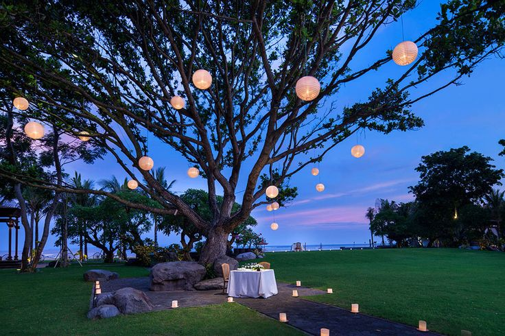 Fairlights and silk lanterns adorn the many beautiful trees in the estate.